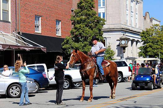 Say Hi to the Horse by Carolyn Ricks