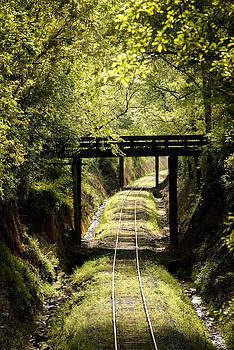 SC-Railroad Track by Thom Tapp