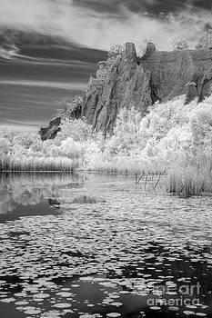Scarborough Bluffs by Jackie Schuknecht