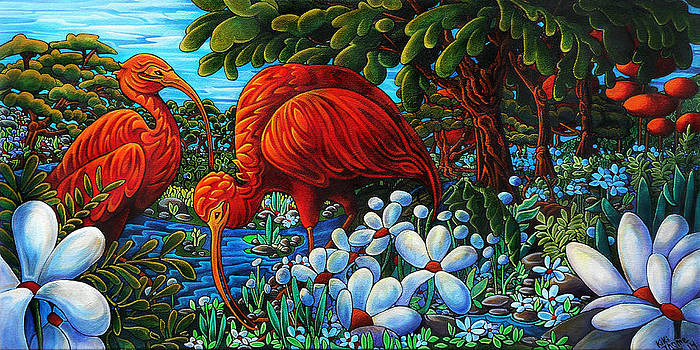 Scarlet Ibis by Thome Designs