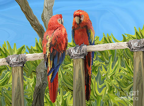 Scarlet Macaw Parrots Perching by Sherin  Hylan