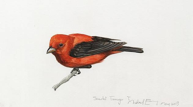 Michael Earney - Scarlet Tanager