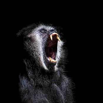 Scary Black Monkey Vicious Fanged Teeth by Tracie Kaska