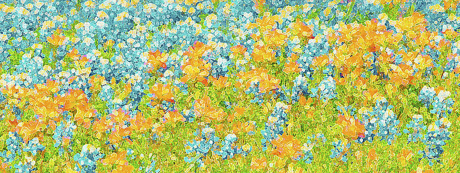Pamela Smale Williams - SCATTERED IMPRESSIONS BOLD WILDFLOWERS
