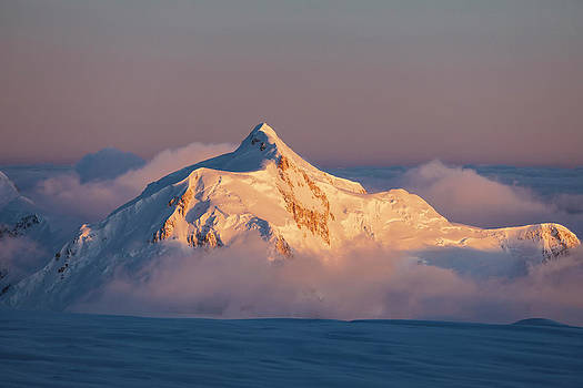 Scenery With Mount Hunter In Denali by Andrew Peacock