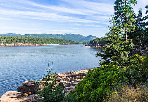 Scenic Cove at Acadia National Park by John M Bailey