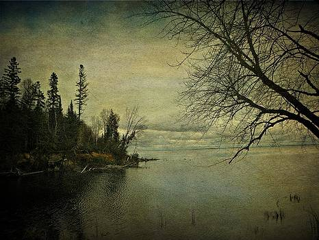 Scenic Lake Nipissing  by Dianne  Lacourciere