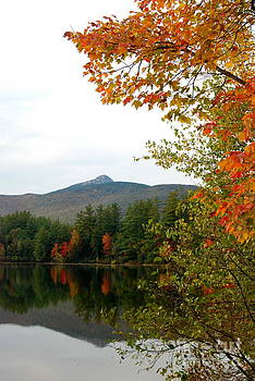 Scenic New Hampshire Lake by Eunice Miller