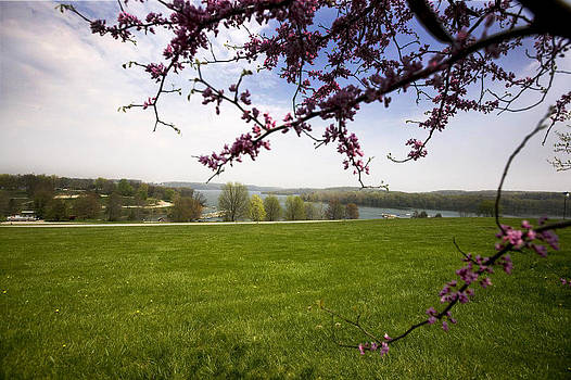 Scenic Park by John Holloway