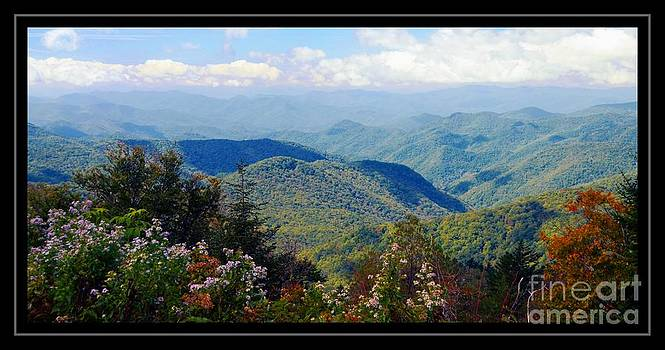 Scenic View by Kathleen Struckle