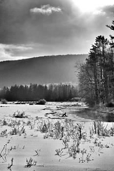 Schenevus creek by Heather Morris