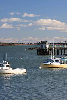 Schoodic Harbor by Dana Moos