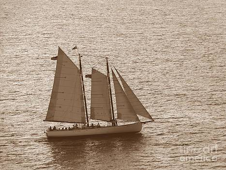 Christine Stack - Schooner Adirondack III Sailing in Key West Florida