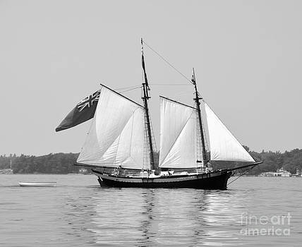 Linda Rae Cuthbertson - Schooner Clipper Ship