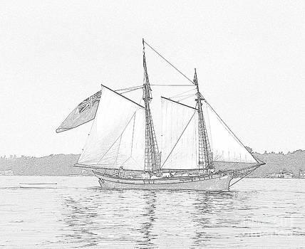 Linda Rae Cuthbertson - Schooner Clipper Ship Sketch