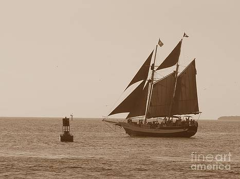 Christine Stack - Schooner Jolly Rover Sailing in Key West Florida