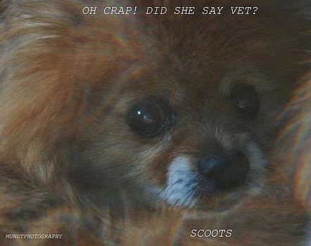 Scoots by Barbara Mundt