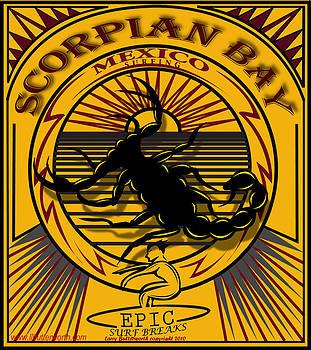 Larry Butterworth - SCORPION BAY BAJA MEXICO SURFING