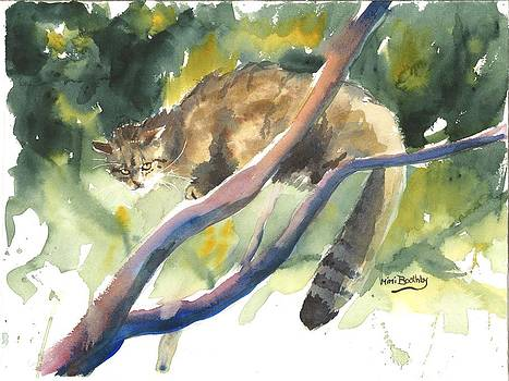 Scottish Wild Cat in a tree by Mimi Boothby