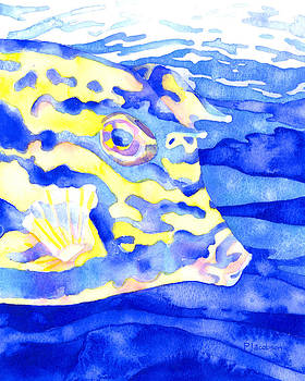 Scrawled Cowfish Portrait by Pauline Jacobson