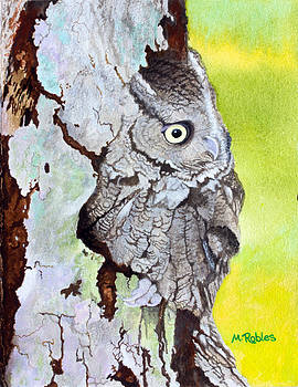 Screech Owl by Mike Robles