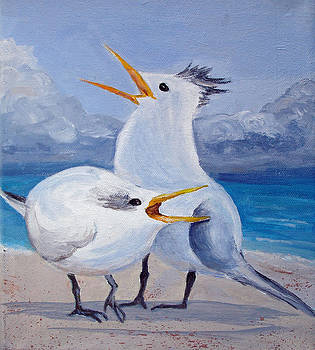 Screeching Gulls by Patricia Hooks