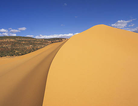 Susan Rovira - Sculpted Sand