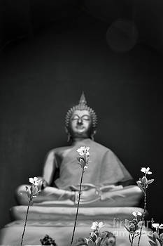 Sculpture Of Budda 4 by Bruce Lan