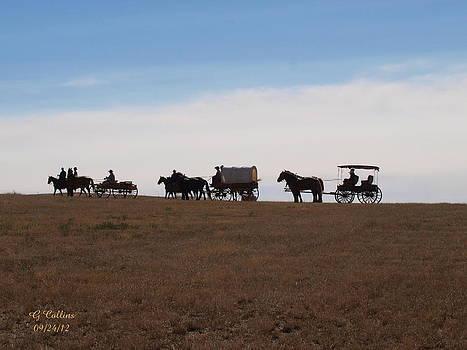 SD Wagon Train by Gordon Collins