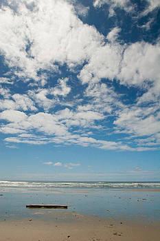 Sea and Sky 2 by Lisa Chorny