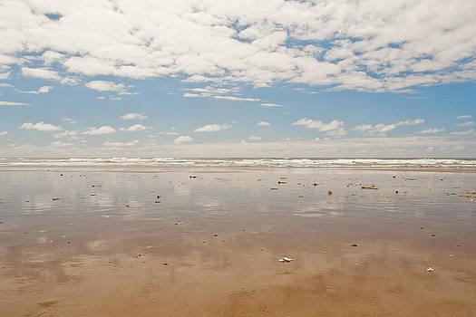 Sea and Sky by Lisa Chorny