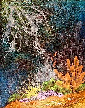 Sea Dream by Arlene Davidson