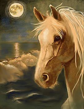 Sea Dream by Terry Webb Harshman