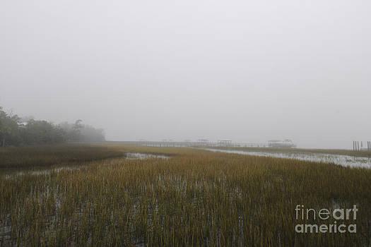 Dale Powell - Wando River Sea Fog