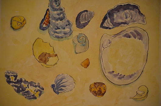 Sea Isle Shells by James Cox