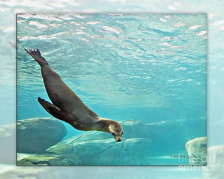 Walter Herrit - Sea Lion 1b