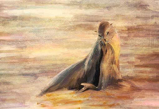 Angela A Stanton - Sea Lion Mom and Pup Love on Galapagos Island
