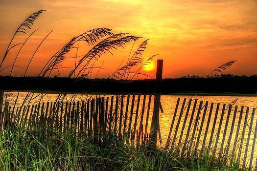 Sea Oak Sunset by Ed Roberts