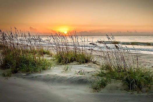 Sea Oat Islands by Steve DuPree