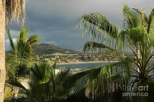 M West - Sea of Cortez