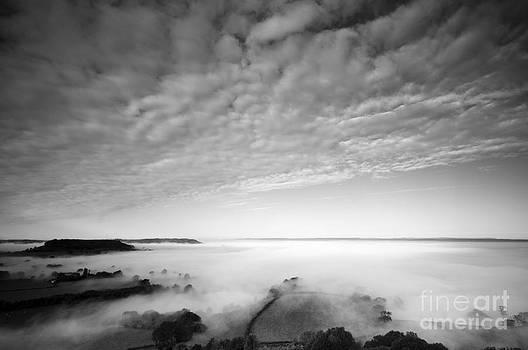 Anne Gilbert - Sea of Fog