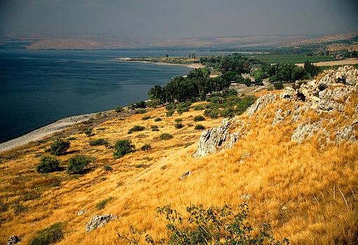 Dennis Cox - Sea of Galilee 2