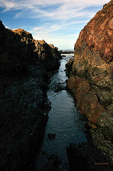 Donna Blackhall - Sea Passages