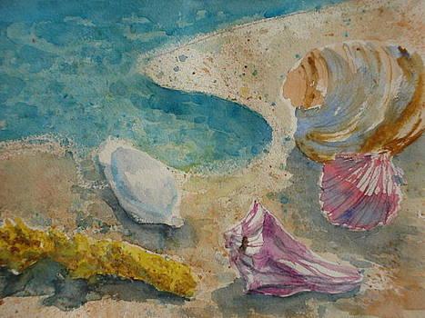 Sea Shells by Lynn Cheng-Varga