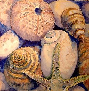 Sea shells by Tania Vasylenko