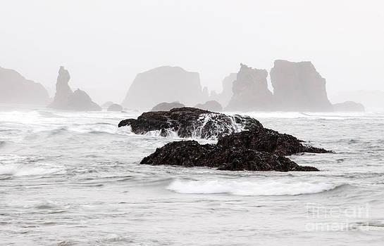 Vivian Christopher - Sea Stacks in the Fog