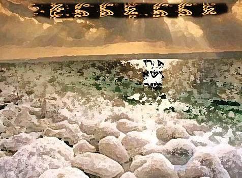 Sea Stone by Prosper Abitbol