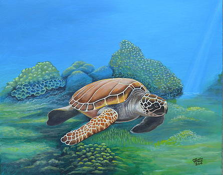 Sea Turtle by Anthony Fotia