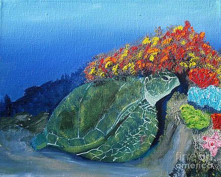 Sea Turtle by Darlene Green