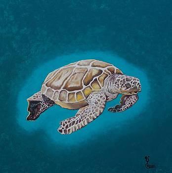 Sea Turtle One by Yabette Swank